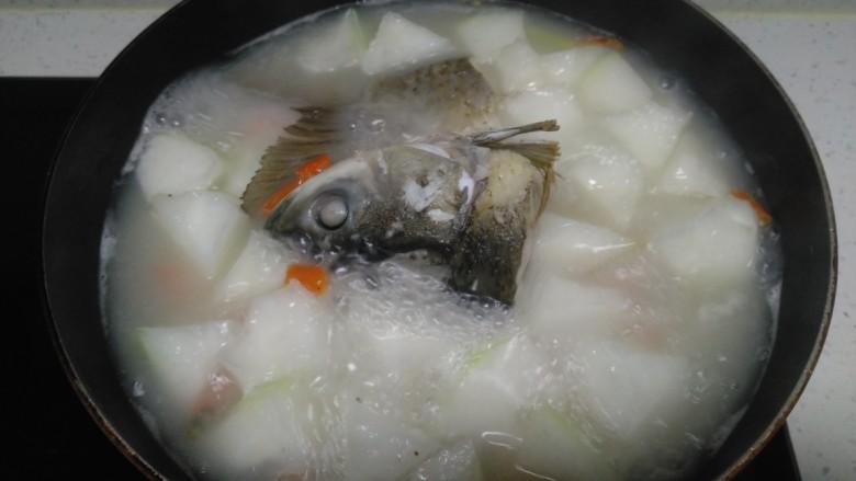冬瓜、白菜炖鱼头、鱼尾,大火煮开转中火煮8分钟,将鱼头翻面