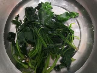 芙蓉鲜蔬汤,焯水的菠菜,放冷水中,过凉
