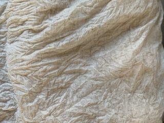 史上最耗时的椰蓉小包,一次发酵