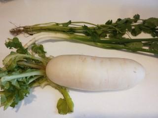 白萝卜羊肉汤,白萝卜去皮洗干净,香葱,香菜洗干净