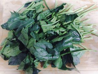 猪肝菠菜汤,菠菜洗干净后切段