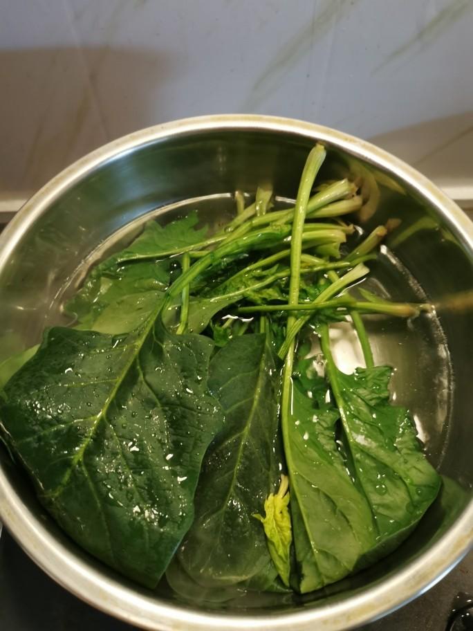 猪肝菠菜汤,用开水汆烫菠菜 捞出过凉