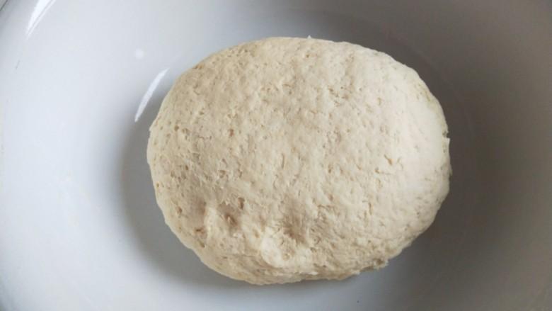 梅干菜烧饼,合成面团发酵。