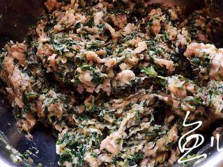 冬至美食 豬肉薺菜水餃,順一個方向攪拌均勻