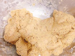 宝石红茶饼干,将面团揉至光滑。