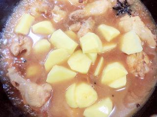 红烧土豆鸡块,加入土豆,盖盖儿继续炖煮15分钟。