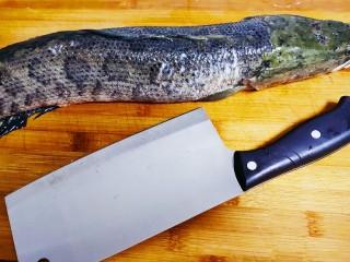 老坛酸菜鱼,准备一条黑鱼,洗净沥水
