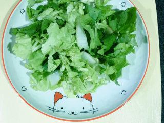 蒜蓉小白菜,小白菜🥬,洗净,沥干水,切断
