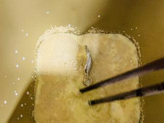 肉桂卷,用筷子搅拌均匀。