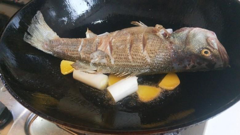 酱焖黄花鱼,放入葱姜。