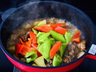 咖喱鸡肉土豆,加入切块的青椒和红椒。