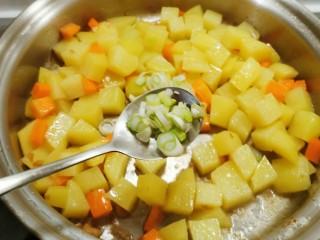 咖喱鸡肉土豆,胡萝卜炒软后放入葱花