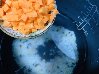 健脾养胃粥,将所有配料加入洗净米的电饭煲中