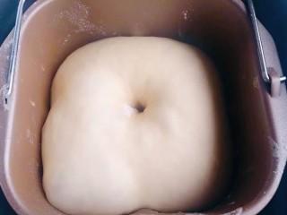 菠萝面包,菠萝皮完成后,面团正好发酵完毕,看面团有没有一发到位,用手按压一个孔,面团不回缩表示发酵完毕