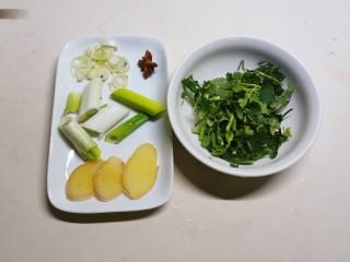香菇鲫鱼汤,姜切片  葱一部分切段  一部分切片  香菜切小段