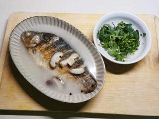香菇鲫鱼汤,出锅装盘  趁热撒上香菜