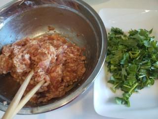 东瓜汆丸子,在搅拌上劲,香菜洗干净切成段备用。