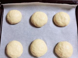菠萝面包,将面团分成六等份滚圆,烤箱中进行二次发酵,发酵到1.5倍大。提前预热烤箱,180度预热10分钟。