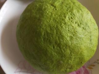 新年五彩繽紛餃子,合成綠色面團醒放。