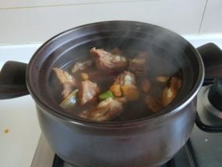 番茄牛腩面,倒入砂锅加入开水炖一半小时左右。