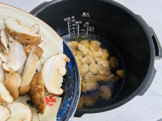 猴头菇鸡汤,放入香菇