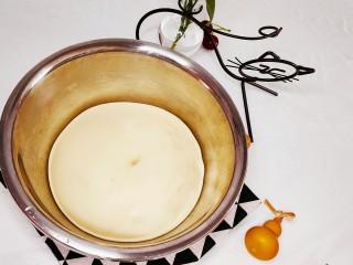 椰蓉面包,发酵至2-3倍大后拿出