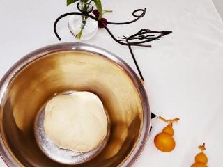 椰蓉面包,继续揉,赶走发酵产生的气泡