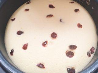 网红电饭锅蔓越莓蛋糕🍰