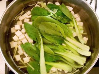 油菜豆腐,加入小油菜,烧开即可