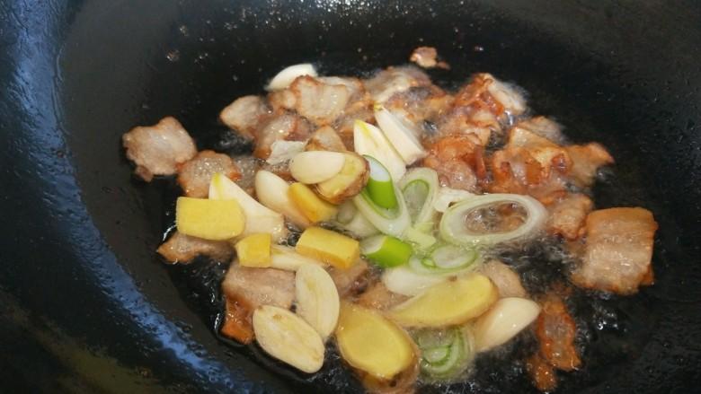 大白菜炖粉条,放入葱姜蒜炒香。