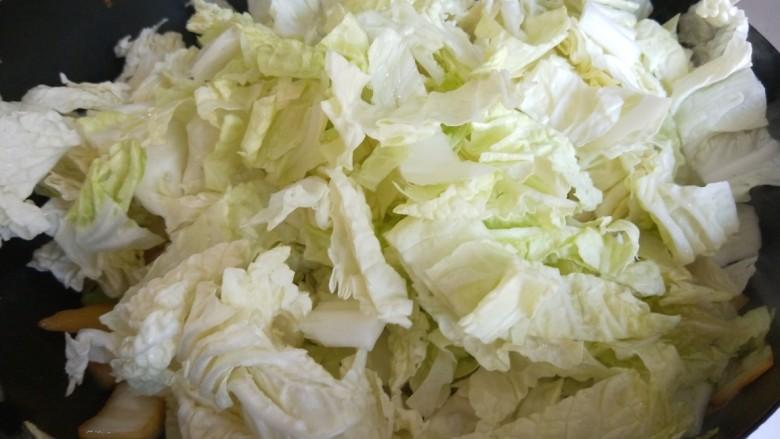 大白菜炖粉条,现在倒入白菜叶。