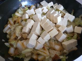 大白菜炖粉条,加入豆腐。