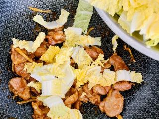 大白菜炖粉条,加入白菜继续翻炒均匀。