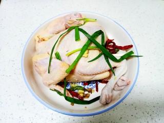 盐水鸡,将鸡里外均匀涂上盐,放入姜、小葱、辣椒冰箱冷藏腌制2小时