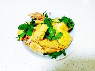 盐水鸡,盛出撒上香菜点缀。