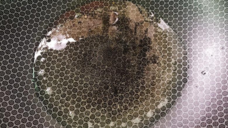 干锅藕片,热锅冷油