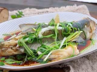清香蒸鲈鱼