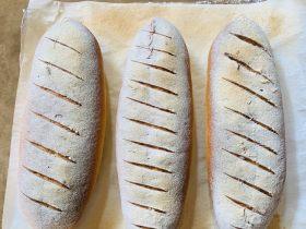 法棍面包🥖