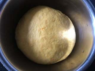 黄金小馒头,发酵至2倍大