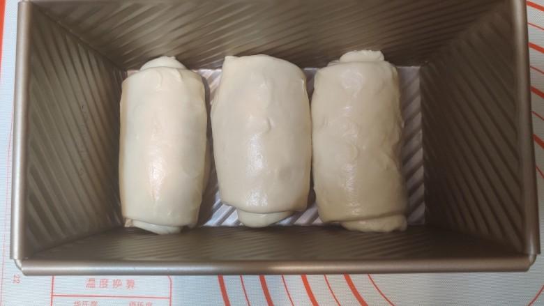 超级柔软的北海道土司(中种法),在模具中排列好