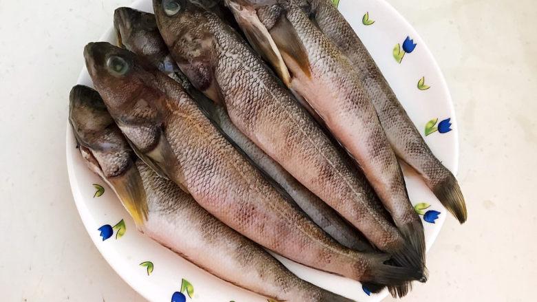 红烧小黄鱼,海黄鱼刮去鱼鳞