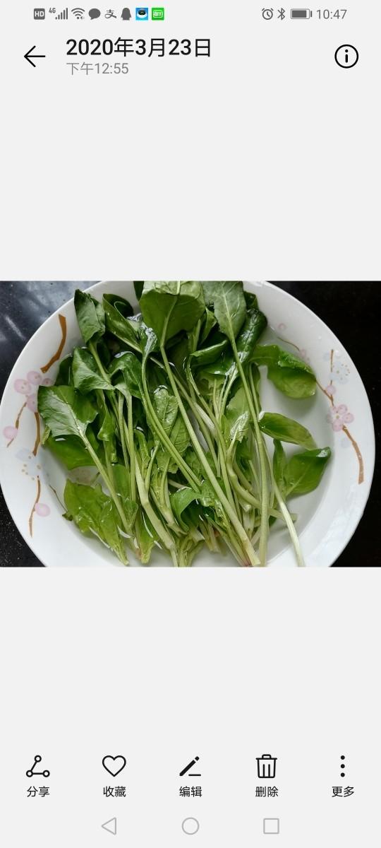凉拌菠菜粉丝,泡水将菠菜清洗干净