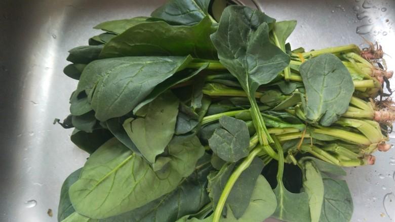 凉拌菠菜粉丝,菠菜一把。