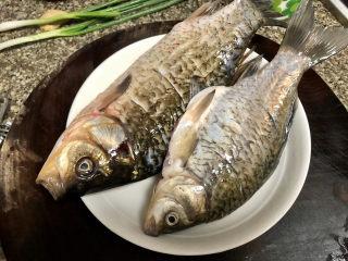 奶白鲫鱼豆腐汤➕朝看白水暮青山,鱼身表面抹层盐腌制10分钟
