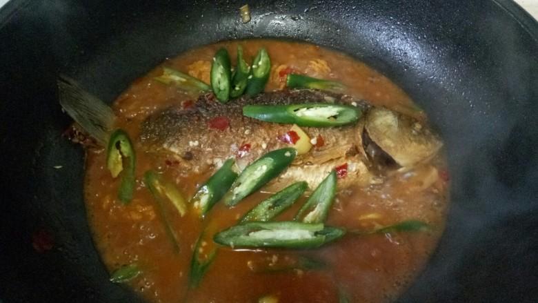 酱焖鲫鱼,加入青椒翻炒,大火收汁