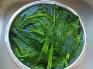 菠菜蛋卷,一百度开水烫一下水。