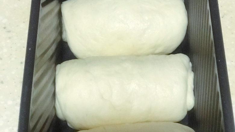 浅湘食光&波兰种面包,准备的是两个吐司的量,一个三个面团,一个面团大约170-180g(我是无盖吐司盒,有盖一个吐司盒每个面团大约150-160g),擀成椭圆形,从椭圆一头轻柔卷成团,放入吐司盒,放入烤箱发酵,烤箱里放一盘开水,中间换一次水(蒸汽发酵夏天大约一小时,冬天大约一个半小时),正规操作发酵箱温度38度,温度75%。