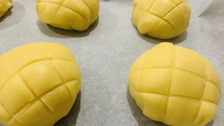 菠萝面包,用刀背切成菠萝的形状,不要压得太深了,然后继续醒发至1.5~2倍大,