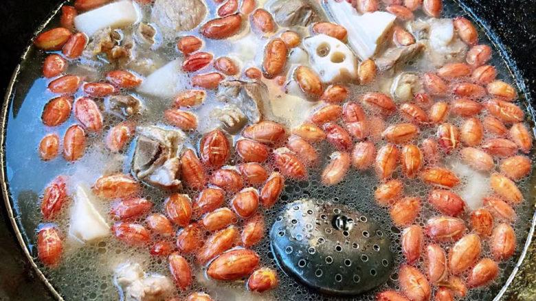 花生莲藕排骨汤,放入花生中火煮十分钟