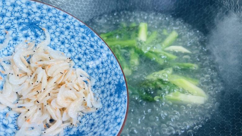 芦笋紫菜汤,倒入虾皮煮开